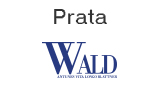 Patrocínio Prata - Wald
